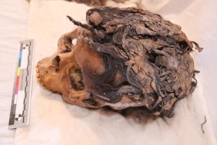 armana-egypt-hair